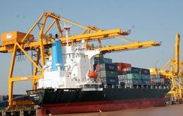 Sẽ chuyển nhượng tối đa 29,58% cổ phần Cảng Hải Phòng
