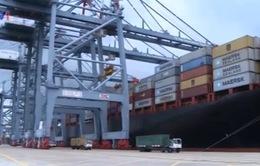 Cần mô hình mới cho phát triển cảng biển Việt Nam