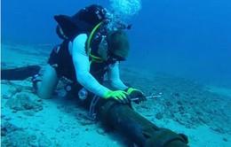 Ngày 17/6: Cáp quang biển AAG hoạt động ổn định trở lại