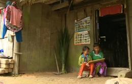 Cuộc sống cơ cực của chị em nhỏ mồ côi ở Hà Giang