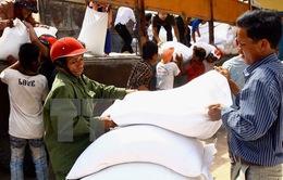 Trợ cấp2.000 tấn gạo cho nhân dân vùng hạn Ninh Thuận