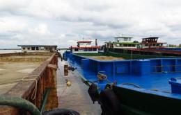Vũng Tàu: Truy bắt cát tặc trên sông Mỏ Nhát