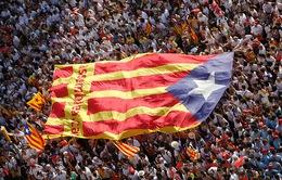 Ý kiến trái chiều trước kết quả bầu cử tại Catalonia