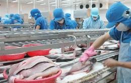 Những bất cập trong Nghị định 36 về cá tra
