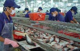 Hợp đồng xuất khẩu cá tra phải nộp phí thẩm định