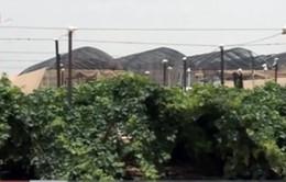 Công nghệ mới giúp canh tác hiệu quả ở vùng sa mạc hóa