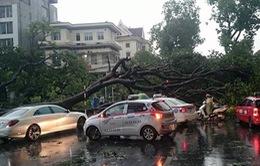 Hà Nội: 98% các khu vực tại Hà Nội có điện trở lại