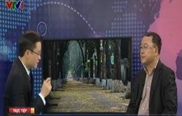 Hà Nội tạm dừng chặt cây xanh: Câu chuyện về ban hành chính sách