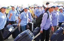 Mỗi doanh nghiệp được đưa tối đa 100 lao động sang Đài Loan