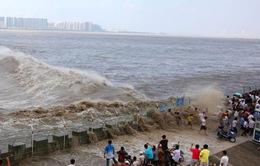 Hãi hùng cảnh thuỷ triều cực mạnh cuốn trôi du khách bên sông Tiền Đường