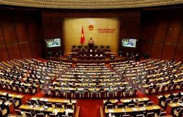 Sự kiện trong nước nổi bật tuần (15-21/11): Thủ tướng và các thành viên Chính phủ trả lời chất vấn