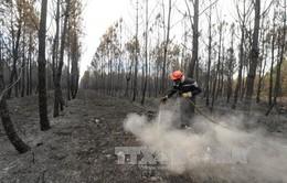 Pháp: 10.000 người phải sơ tán do cháy rừng