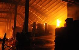 Cháy công ty bao bì tại Khu công nghiệp Nhơn Trạch - Đồng Nai