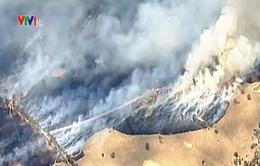Cháy rừng dữ dội tại bang Victoria, Australia