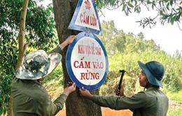Cà Mau: Cảnh báo cháy cực kỳ nguy hiểm