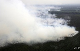 Malaysia điều máy bay hỗ trợ Indonesia dập tắt cháy rừng
