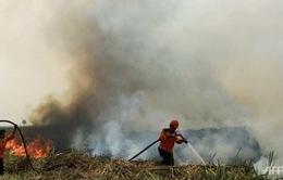 Singapore hỗ trợ Indonesia giải quyết nạn khói mù