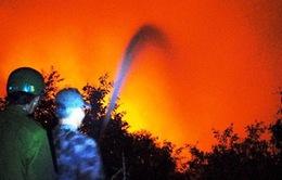 Cháy lớn hàng chục ha rừng sản xuất U Minh Thượng