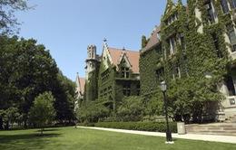 Mỹ: Đại học Chicago đóng cửa do bị đe dọa