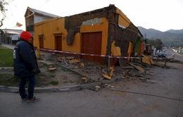 Tổng thống Chile thị sát khu vực xảy ra động đất