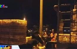 Chợ gà tự phát ngang nhiên hoạt động giữa Hà Nội
