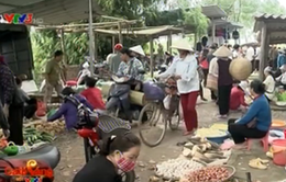 Rộn ràng phiên chợ quê huyện Thạch Thất, Hà Nội