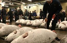 Nhật Bản đề nghị WTO phân xử tranh cãi thương mại với Hàn Quốc