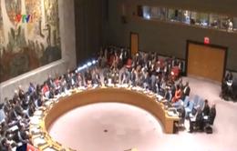 LHQ họp bàn ngăn chặn chiến binh nước ngoài tham gia khủng bố