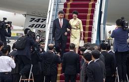 'Trung Quốc hết sức coi trọng mối tình hữu nghị truyền thống với Việt Nam'