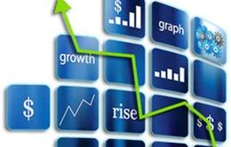 Nhà đầu tư chứng khoán kỳ vọng vào năm mới 2015