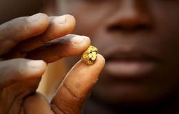 Cuộc sống của những đứa trẻ đào vàng tại Philippines