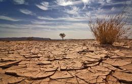Thế giới có thể hứng chịu nhiều hiện tượng thời tiết cực đoan vào năm 2050