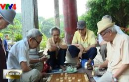Cờ tướng vỉa hè - Nét văn hóa Hà Nội