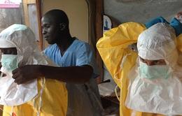 Dịch Ebola trước nguy cơ bùng phát trở lại