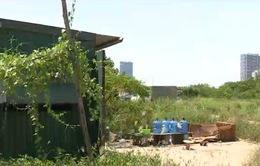 Trường học, trụ sở công sẽ được phép cho thuê đất
