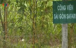 Dự án công viên hiện đại nhất Việt Nam tắc nghẽn hơn 10 năm