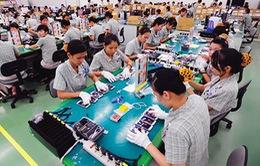 Ngành gia công phần mềm Việt Nam lọt top 5 châu Á