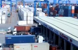 Cục Hàng hải bàn giải pháp giải quyết container tồn kho