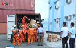 Mật phục 2 tháng, bắt container hàng cấm từ châu Âu