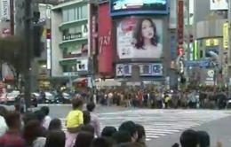 Nhật Bản: Cổ phiếu viễn thông mất giá mạnh nhất trong 4 năm qua