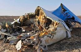 Máy bay Nga rơi tại Ai Cập: Đã tìm thấy hai hộp đen