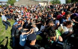 Croatia không tiếp nhận thêm người di cư