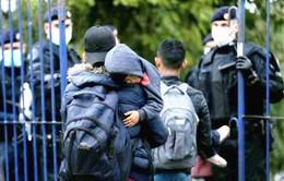 Croatia mở cửa biên giới trở lại với Serbia