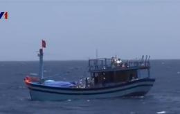 Bảo vệ an toàn của ngư dân - Nhiệm vụ thường xuyên của Cảnh sát biển