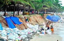 Quảng Nam: Sóng lớn xóa sổ hoàn toàn bãi biển Cửa Đại