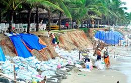 Quảng Nam: Sạt lở biển xóa sổ hoàn toàn bãi tắm Cửa Đại