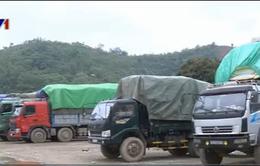 Hàng nghìn tấn gạo ùn tắc tại cửa khẩu Lào Cai