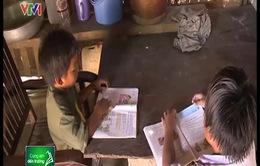 """Những người """"gieo chữ"""" nơi vùng cao Bình Thuận"""