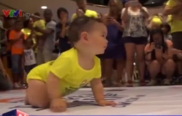 Thú vị cuộc thi bò dành cho trẻ sơ sinh tại Mỹ