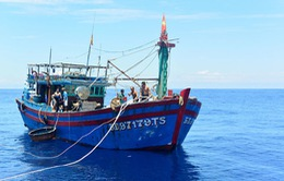 Đà Nẵng: Cứu hộ thành công 12 ngư dân trên tàu sắp chìm